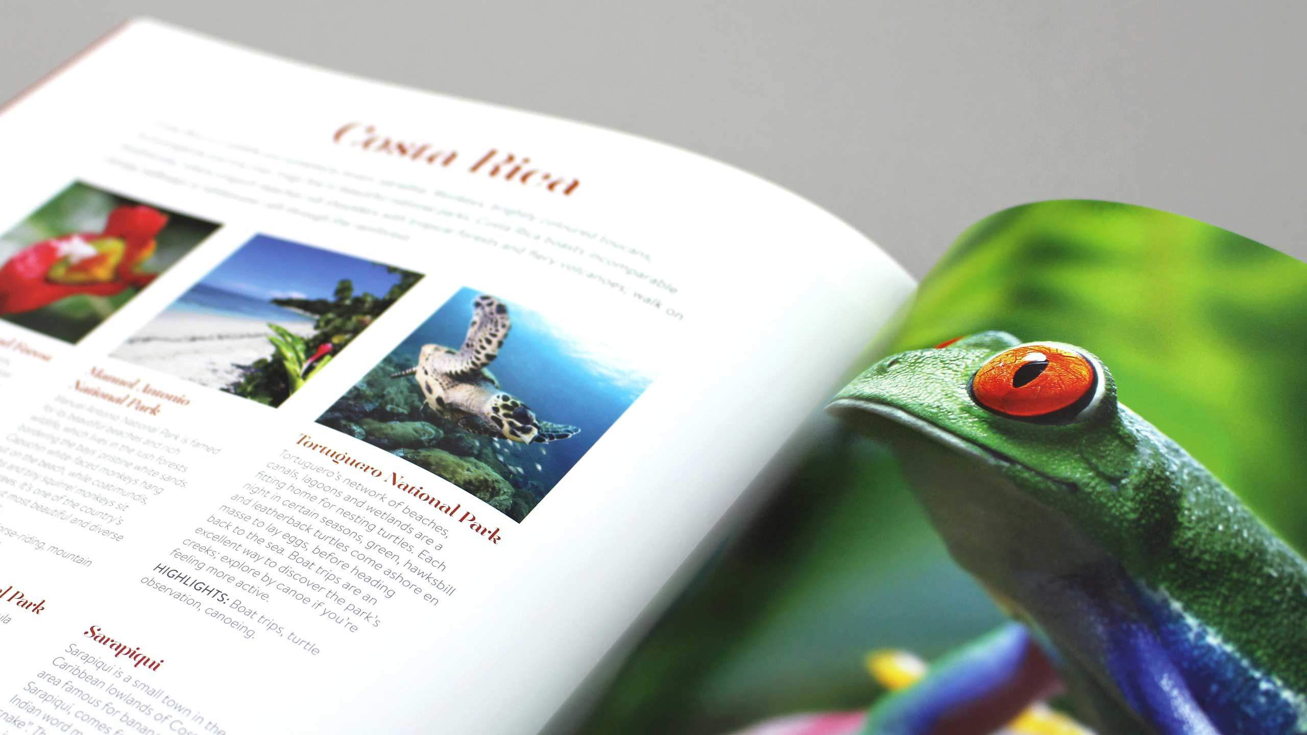 bespoke travel brochure design costa rica frog pages explore tailor made