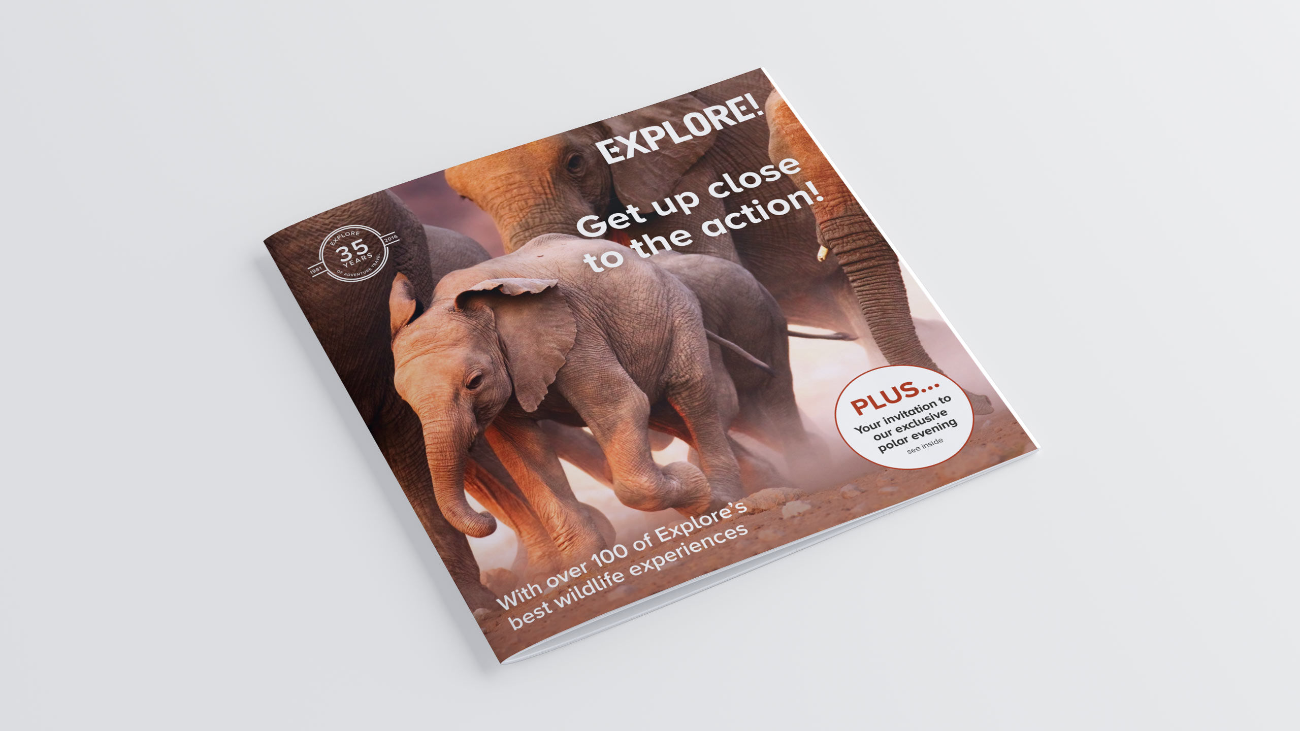 adventure travel brochure design refresh front cover elephants wild life direct marketing