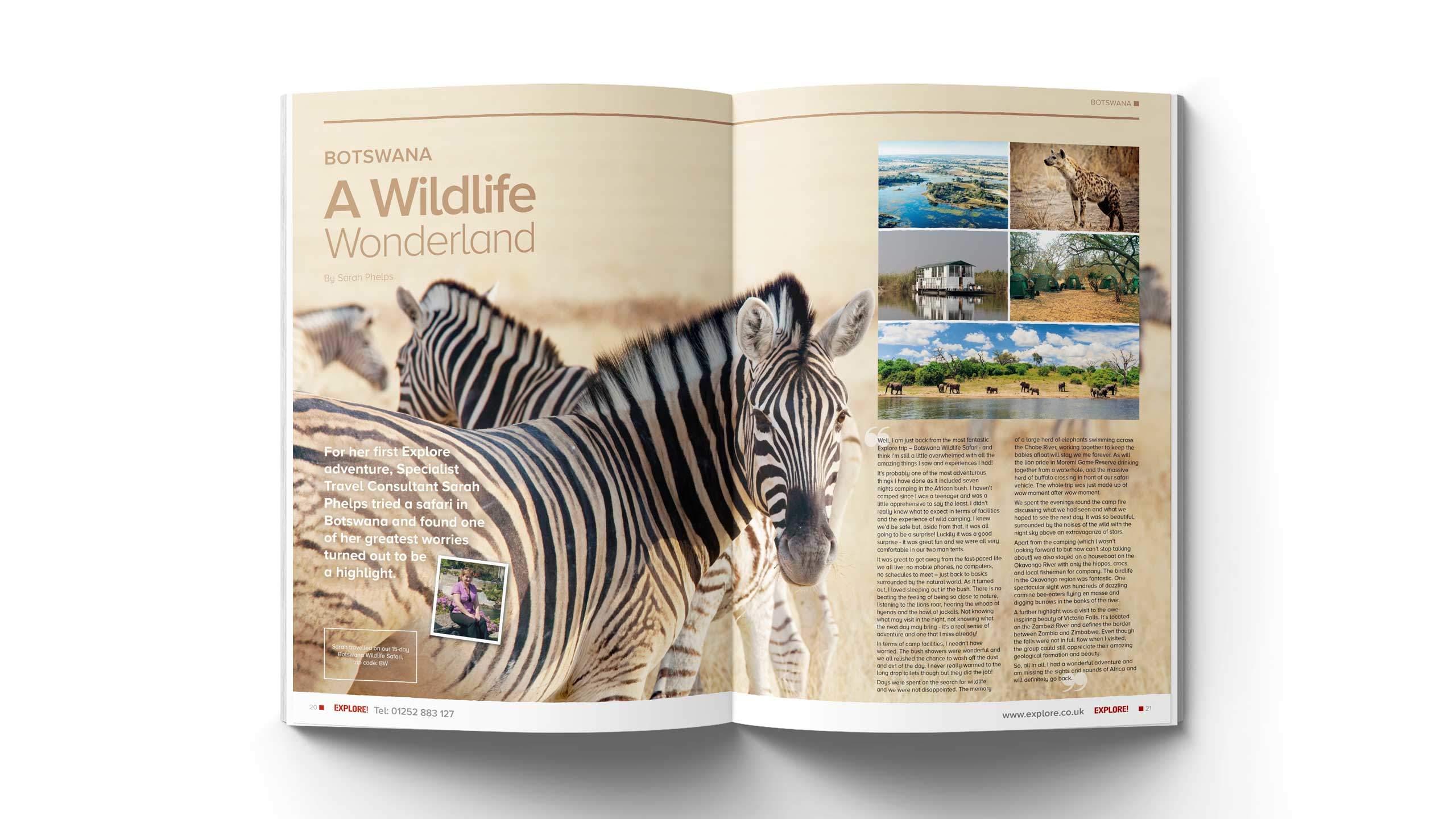 travel magazine brochure design botzwana wild life pages longitude